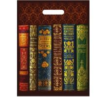 Пакет Книги, прорубная ручка, 30х40см, 50мкм, Интерпак