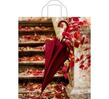 Пакет Бордовый зонт, петлевая ручка, 420x380x0,037, Тико-Пластик