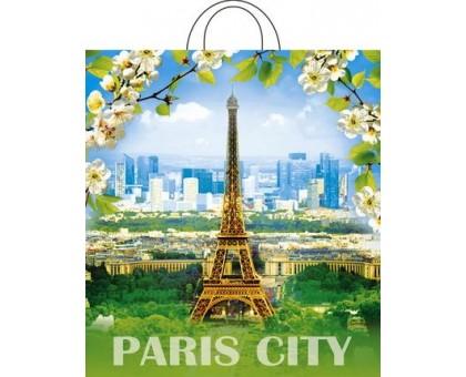 Пакет с петлевой ручкой, Цветущий город, 38х42см, 40мкм, Интерпак