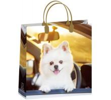 Пакет Белое чудо М 154/С, мягкий пластик, 230*260+100мм, MagicPack