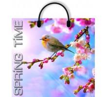 Пакет Время весны, пластиковая ручка, 370*350мм, MagicPack