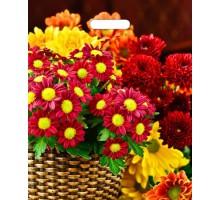 Пакет Бордовые цветы, вырубная ручка, 450*380мм